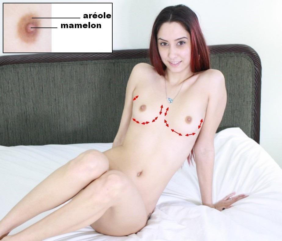 Une photo des seins d'une femme