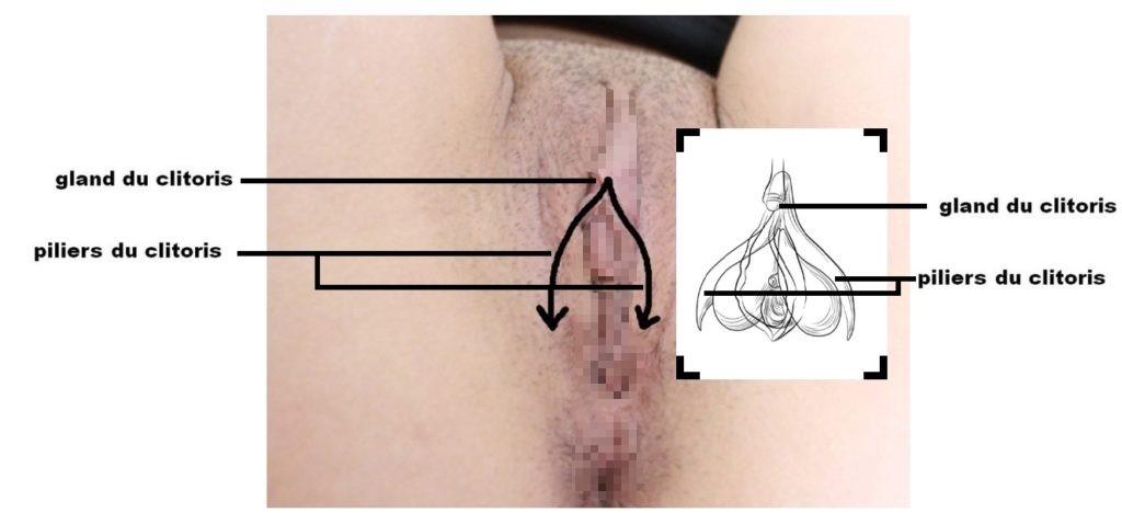 Une technique de stimulation buccale du clitoris