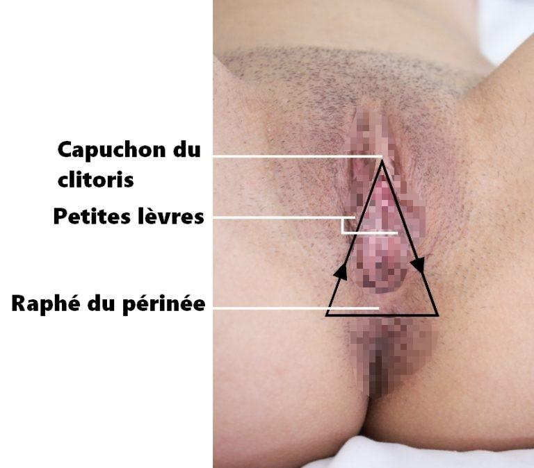 La technique du triangle amoureux (technique sexe)