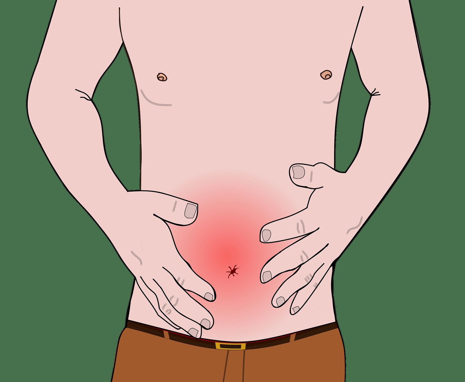 Le cunni améliore la digestion